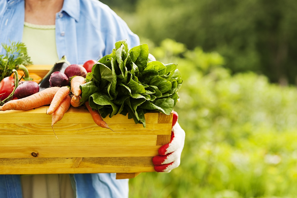 Healthy, Organic Hospital Foodservice